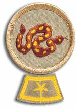 National Honor Patrol patch